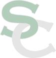 South County High School logo.