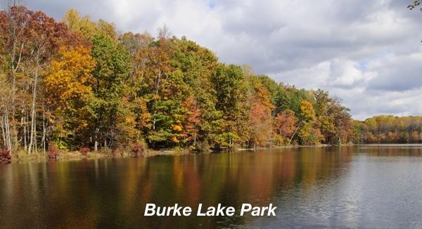 Burke Lake Park.