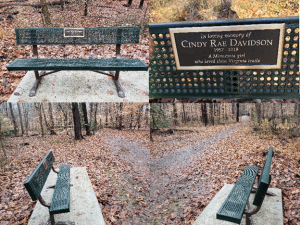 Park bench collage.