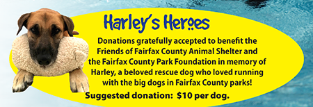 Donation request for Harley's Heroes.